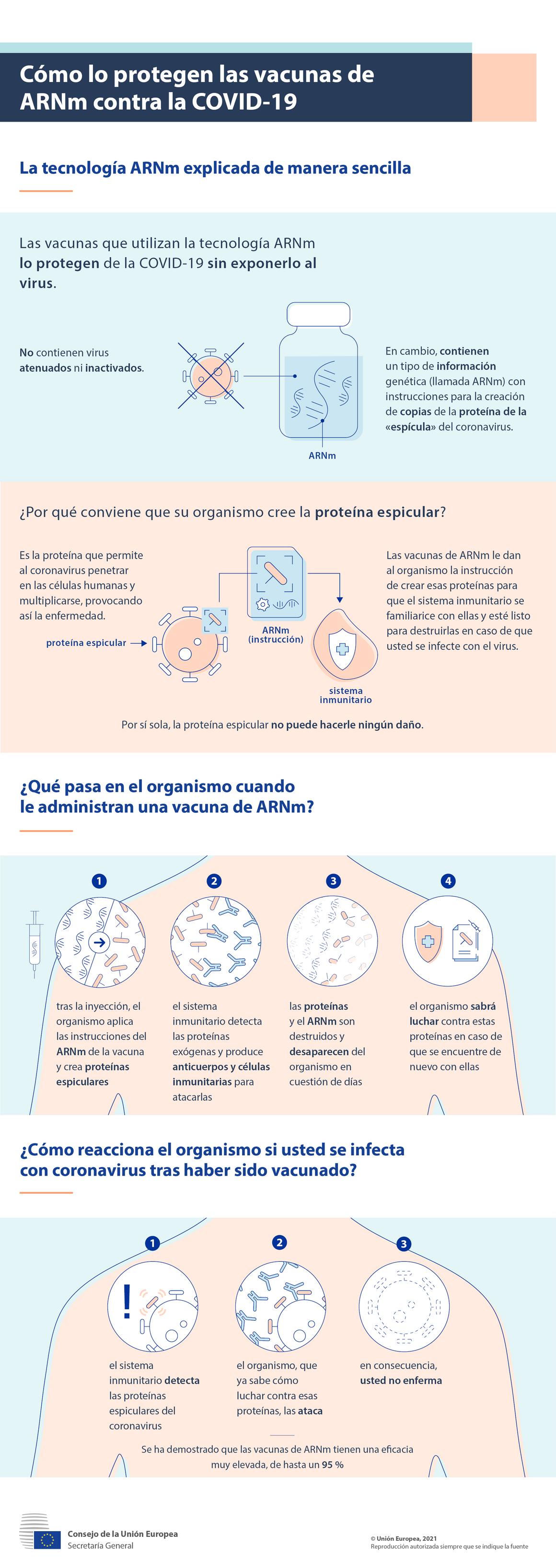 Infografía: Cómo lo protegen las vacunas de ARNm contra la COVID-19