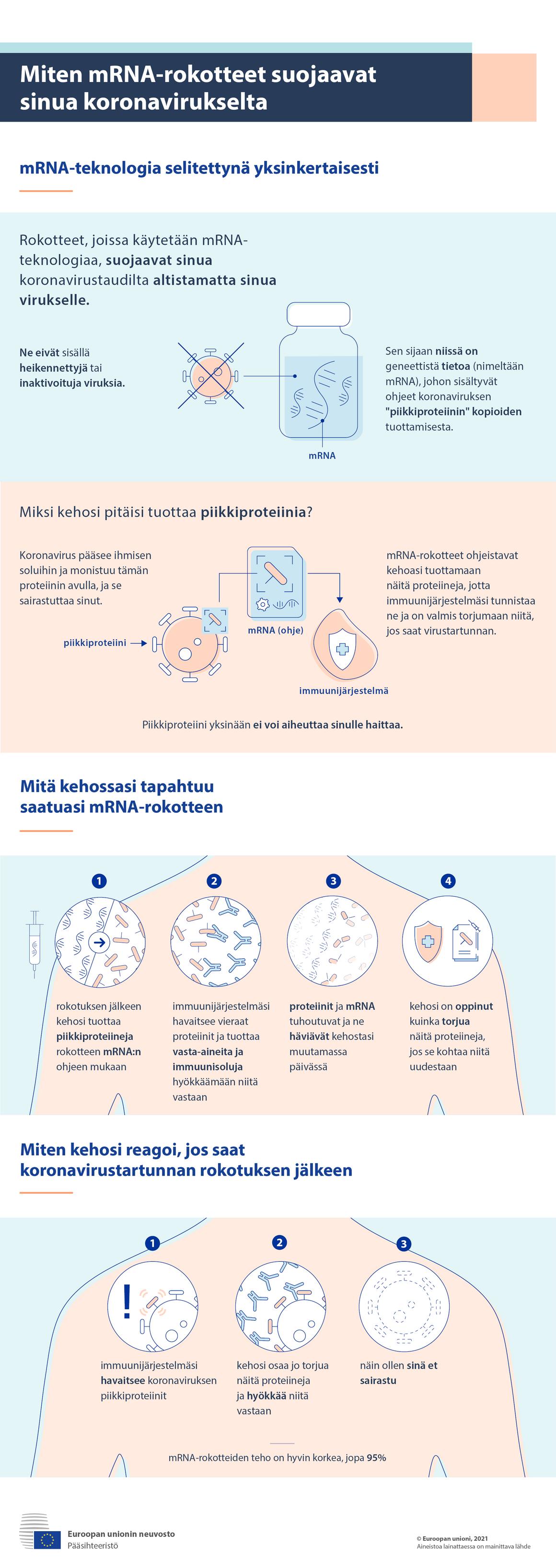 Infograafi: Näin mRNA-rokotteet suojaavat sinua koronavirukselta