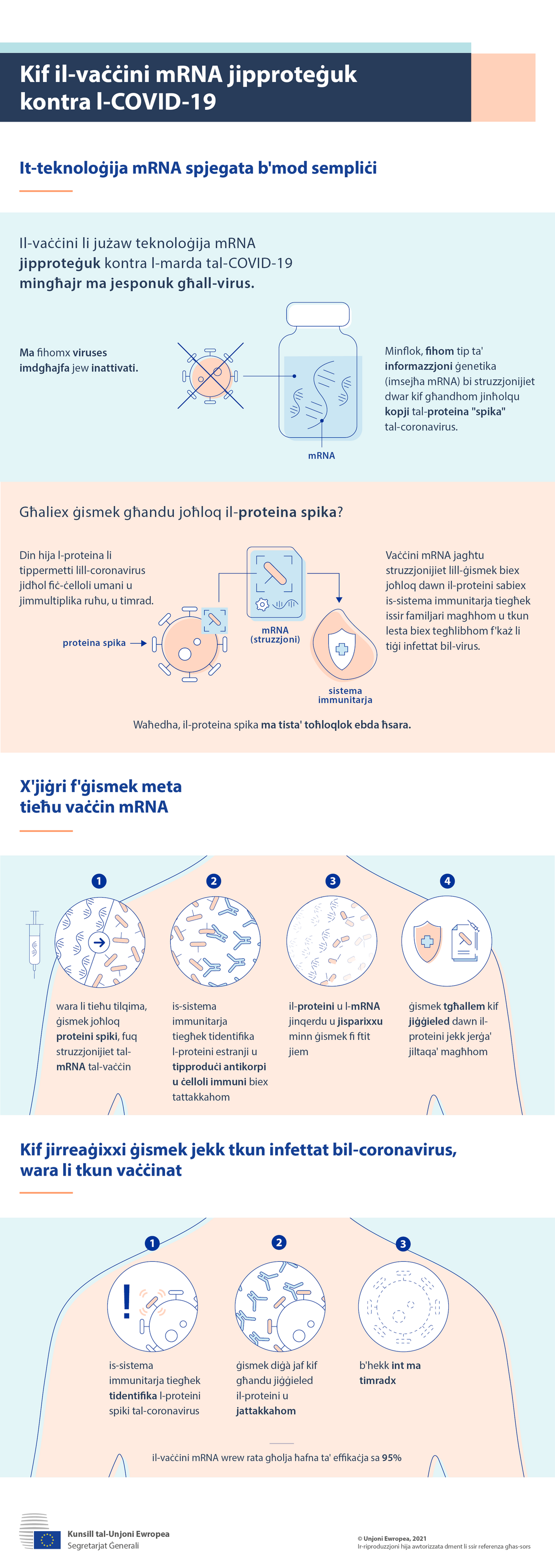 Infografika: Kif il-vaċċini mRNA jipproteġuk kontra l-COVID-19