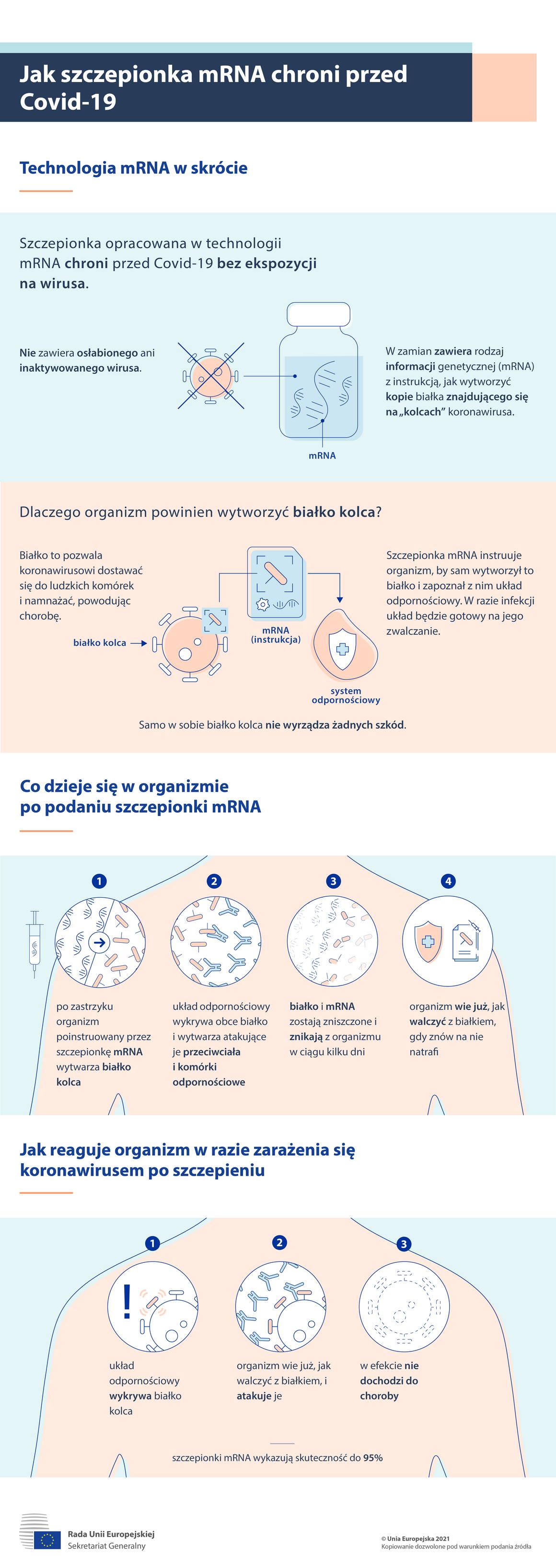 Infografika: Jak szczepionki mRNA chronią przed COVID-19