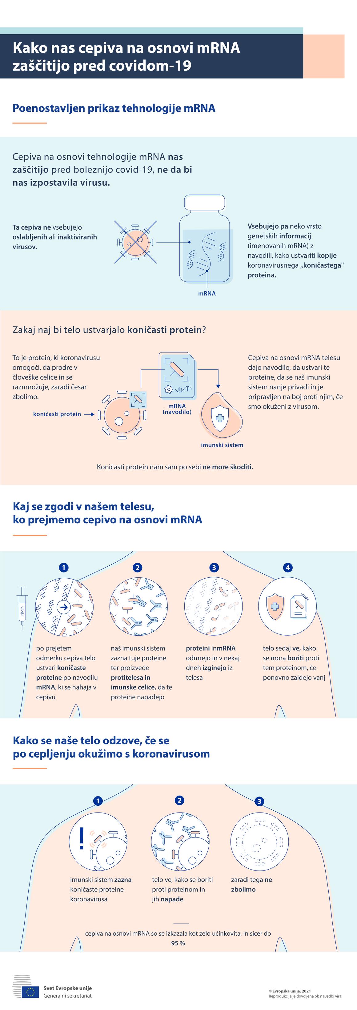 Infografika – Kako nas cepiva na osnovi mRNK zaščitijo pred covidom-19?