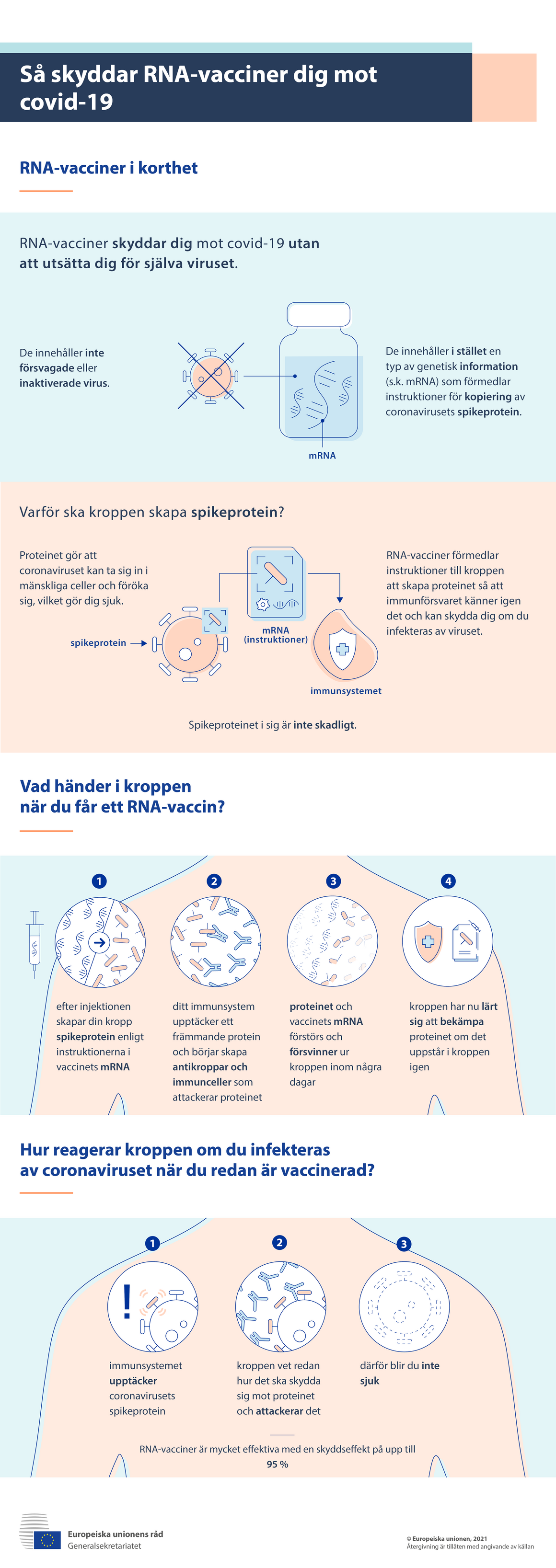 Infografik: Så skyddar mRNA-vacciner mot covid-19