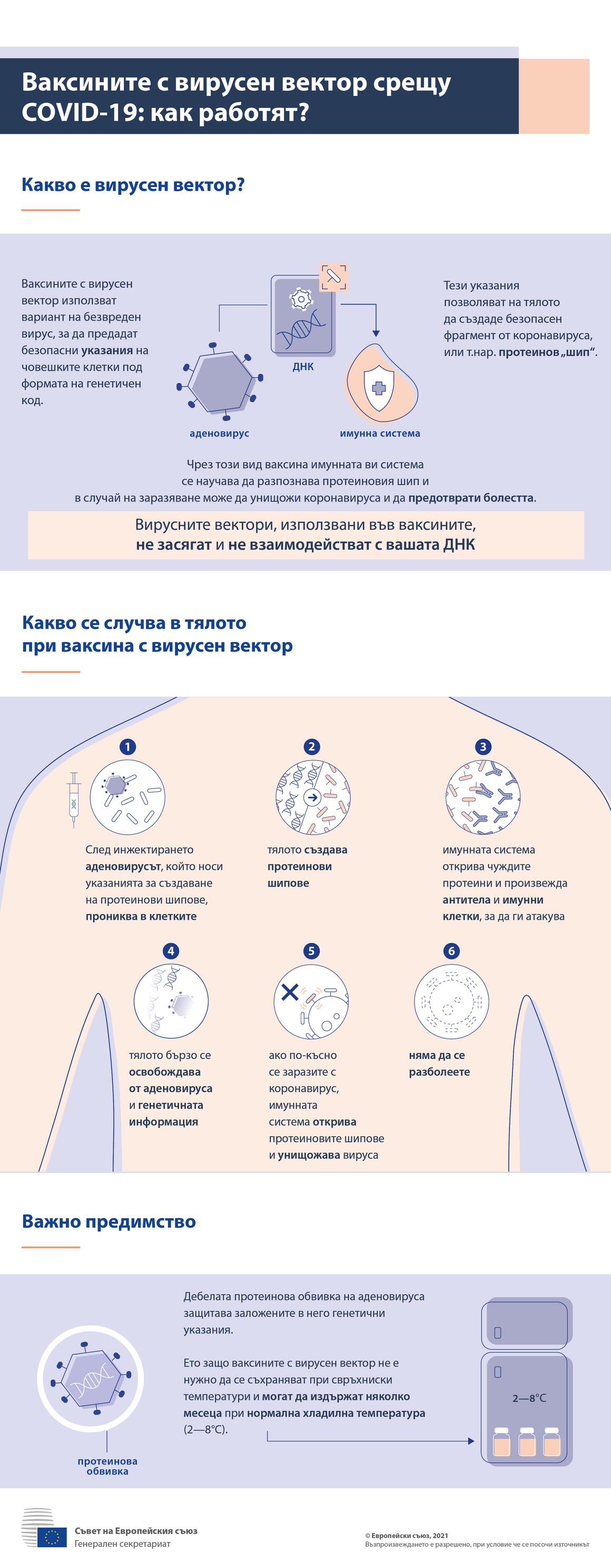 Инфографика — ваксини с вирусен вектор срещу COVID-19: как действат