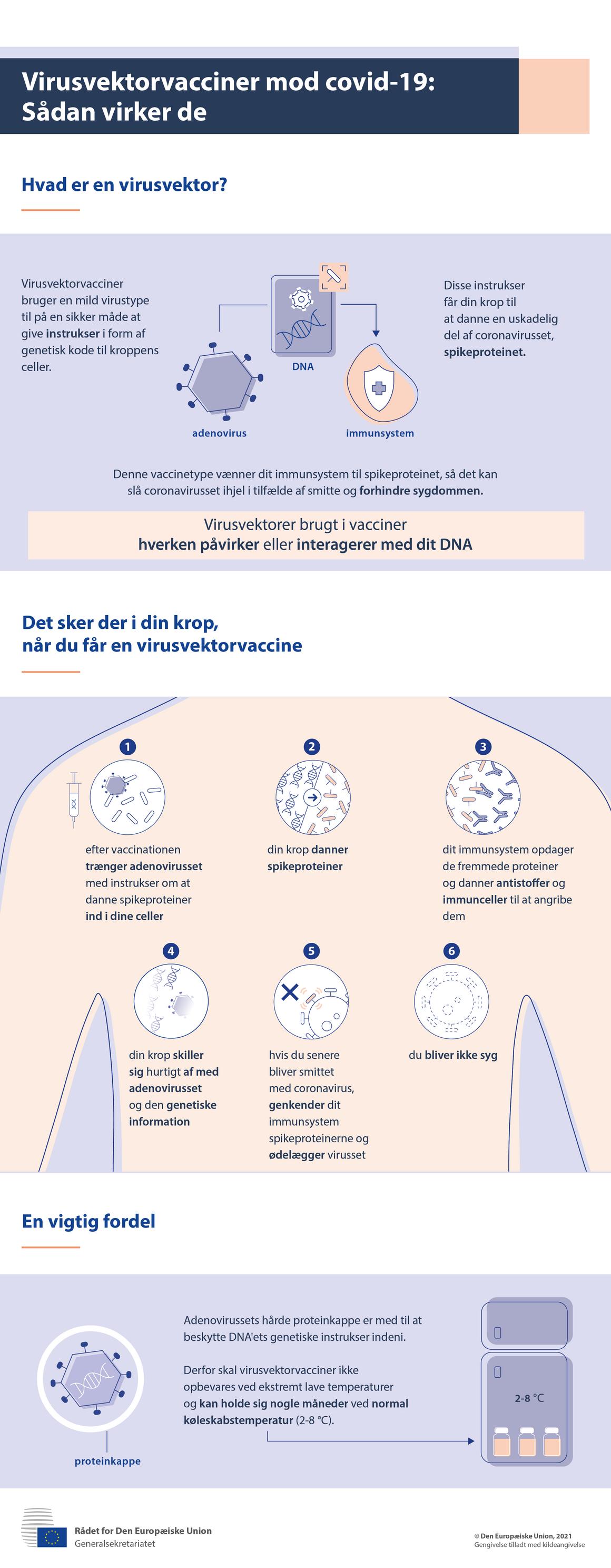 Infografik — Virusvektorvacciner mod covid-19: Sådan virker de