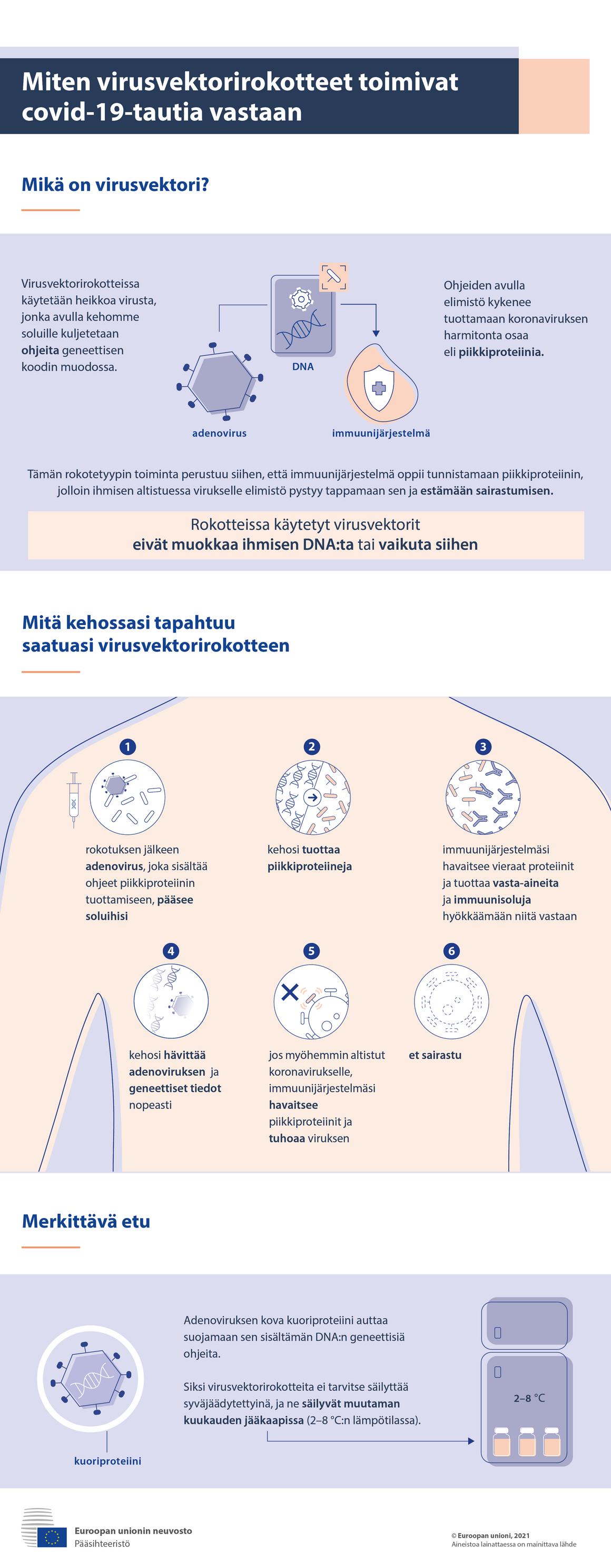 Infograafi – Näin virusvektorirokotteet toimivat covid-19-tautia vastaan