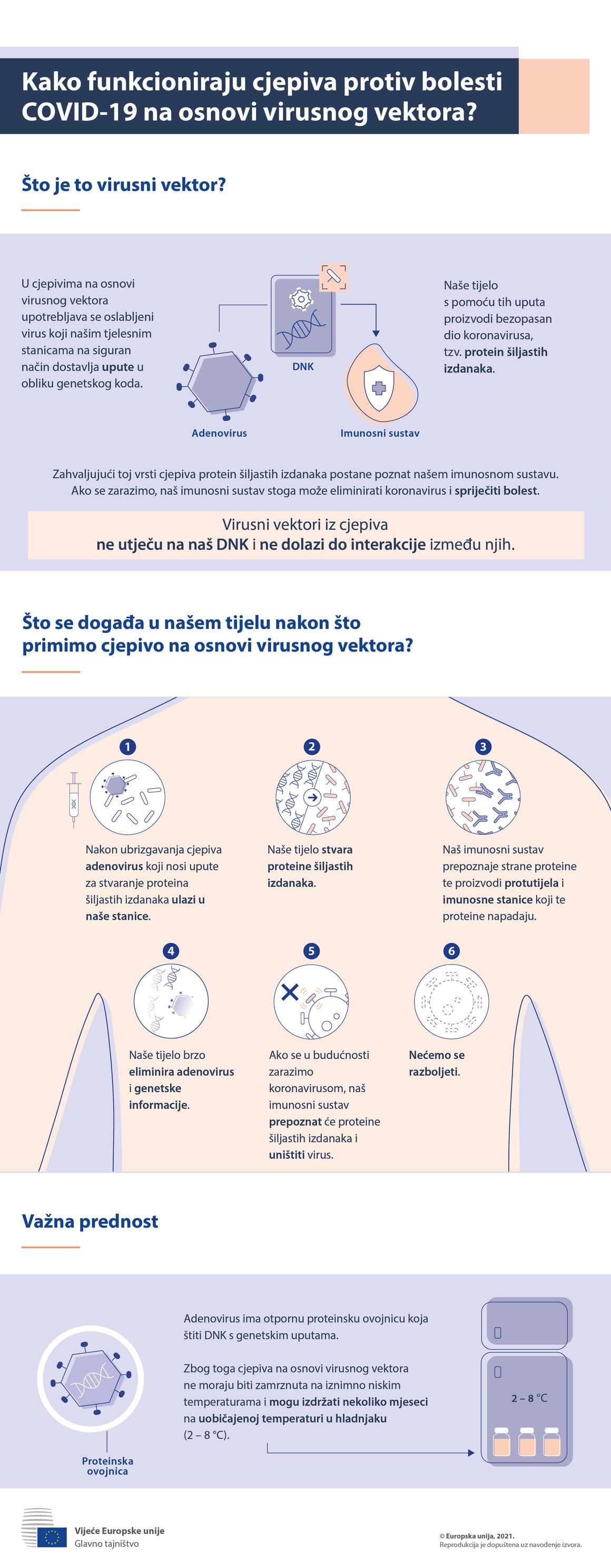 Inforgrafika – Cjepiva protiv bolesti COVID-19 koja sadržavaju virusne vektore: kako djeluju