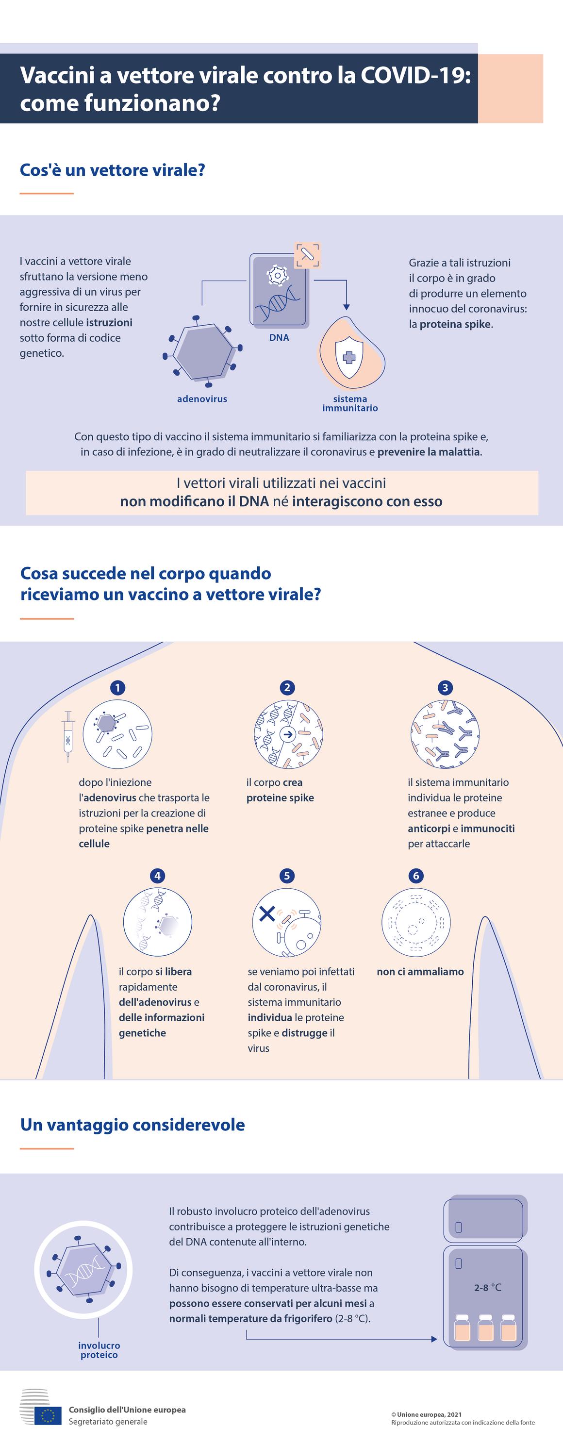 Infografica - Vaccini a vettore virale contro la Covid-19: come funzionano?