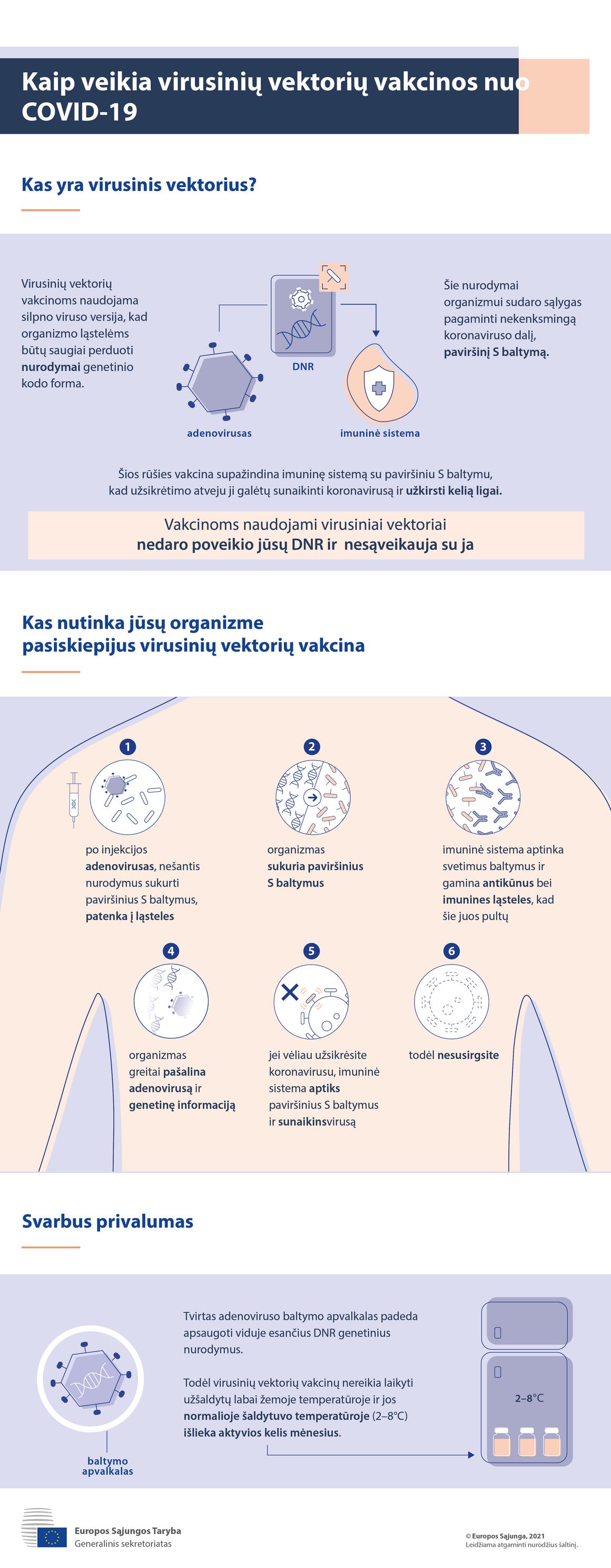 Infografikas. Virusinių vektorių vakcinos nuo COVID-19: kaip jos veikia