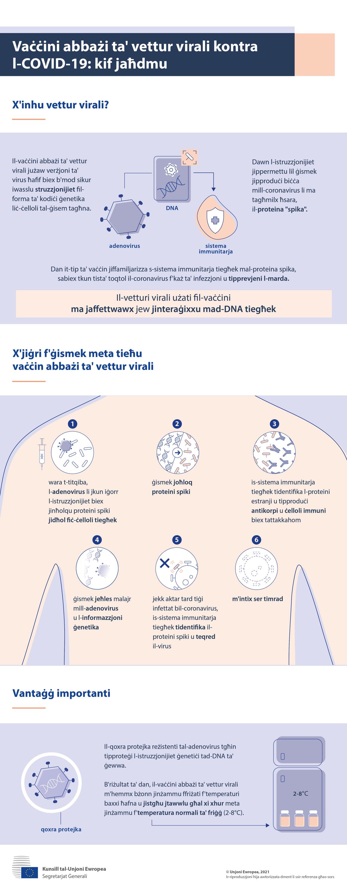Infografika - Vaċċini abbażi ta' vettur virali kontra l-COVID-19: kif jaħdmu