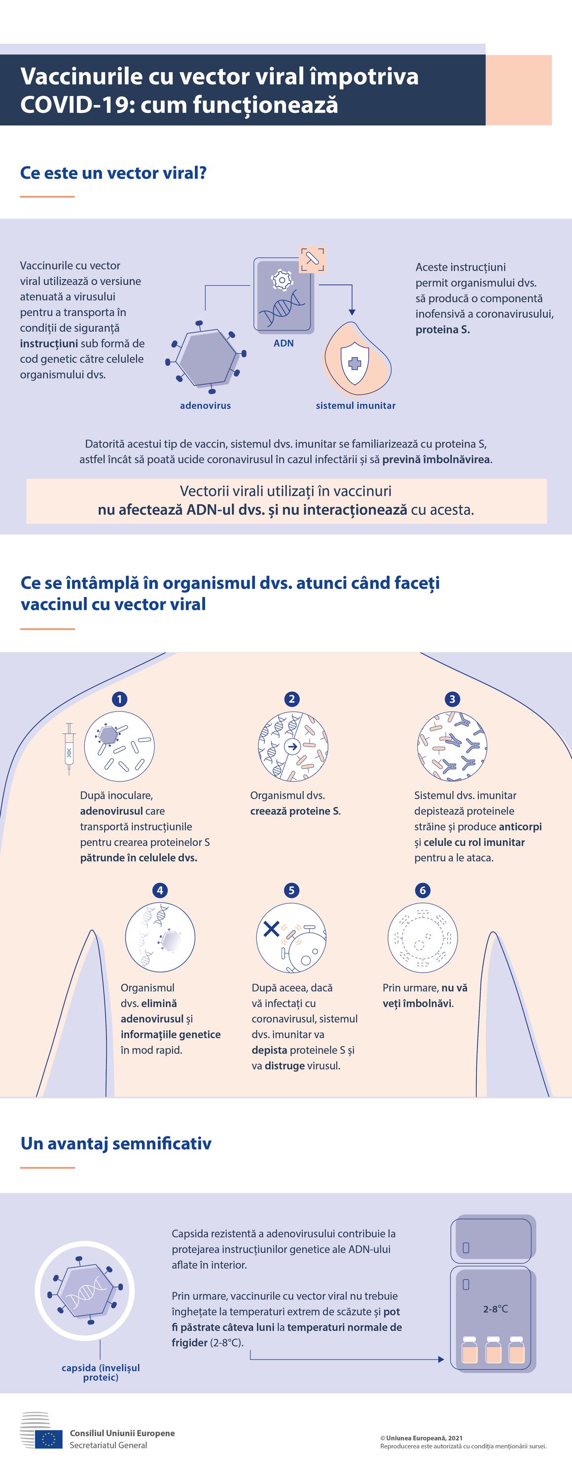 Infografic - Vaccinuri cu vector viral împotriva COVID-19: cum acționează
